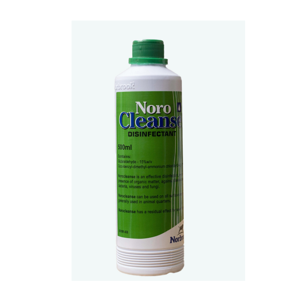 NoroCleanse Disinfectant